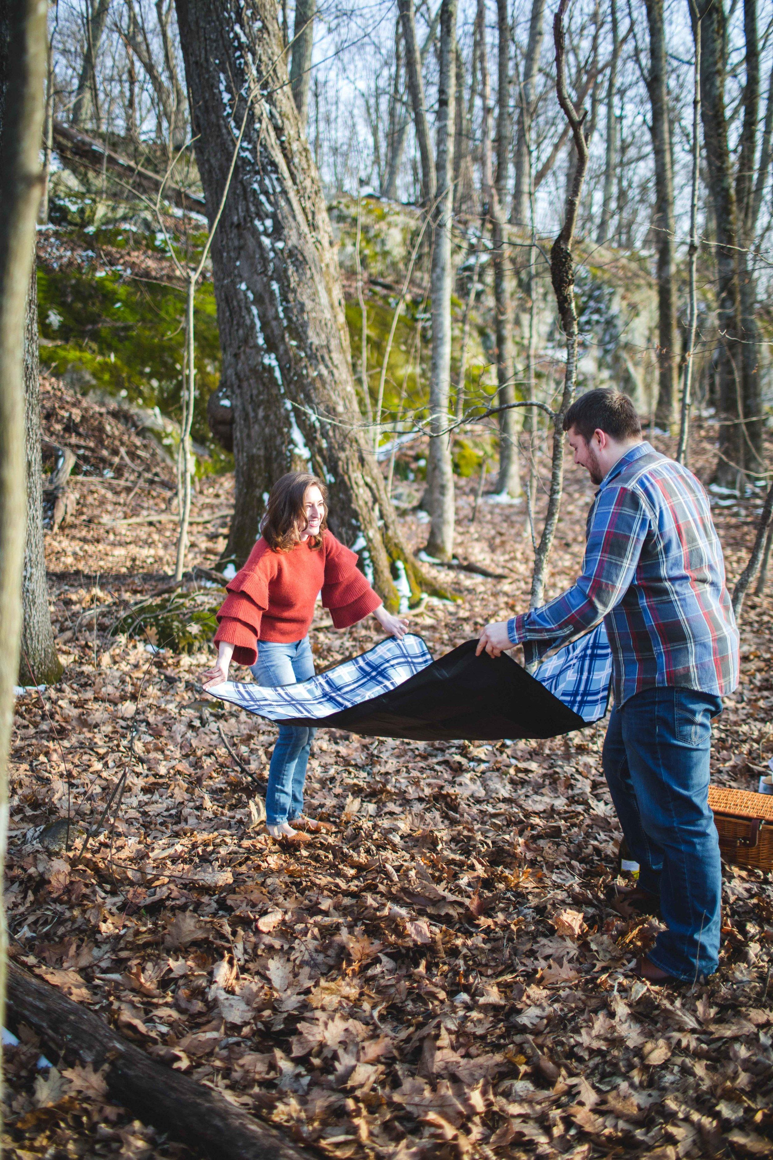 shenandoah-national-park-engagement-shenandoah-wedding-photographer-1.jpg