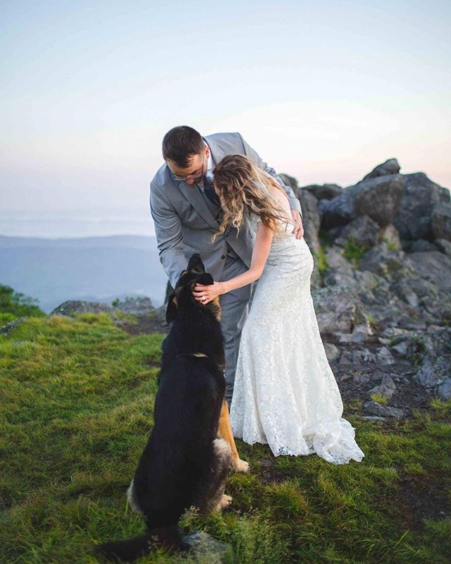 Eloping in the mountains with your pup... I think it should happen! I still have some open dates in August & September for those last minute couples that want to make the commitment! You choose the day, I'll provide the experience!
