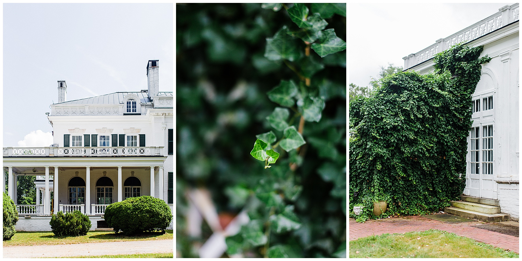 oak-ridge-estate-wedding-virginia-photographer5.jpg