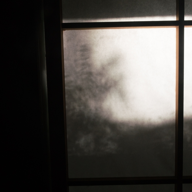 Feeble light seeping into my bedroom through a shoji screen on a cool October morning. Be still. It's so beautiful. Do not move. Be still.