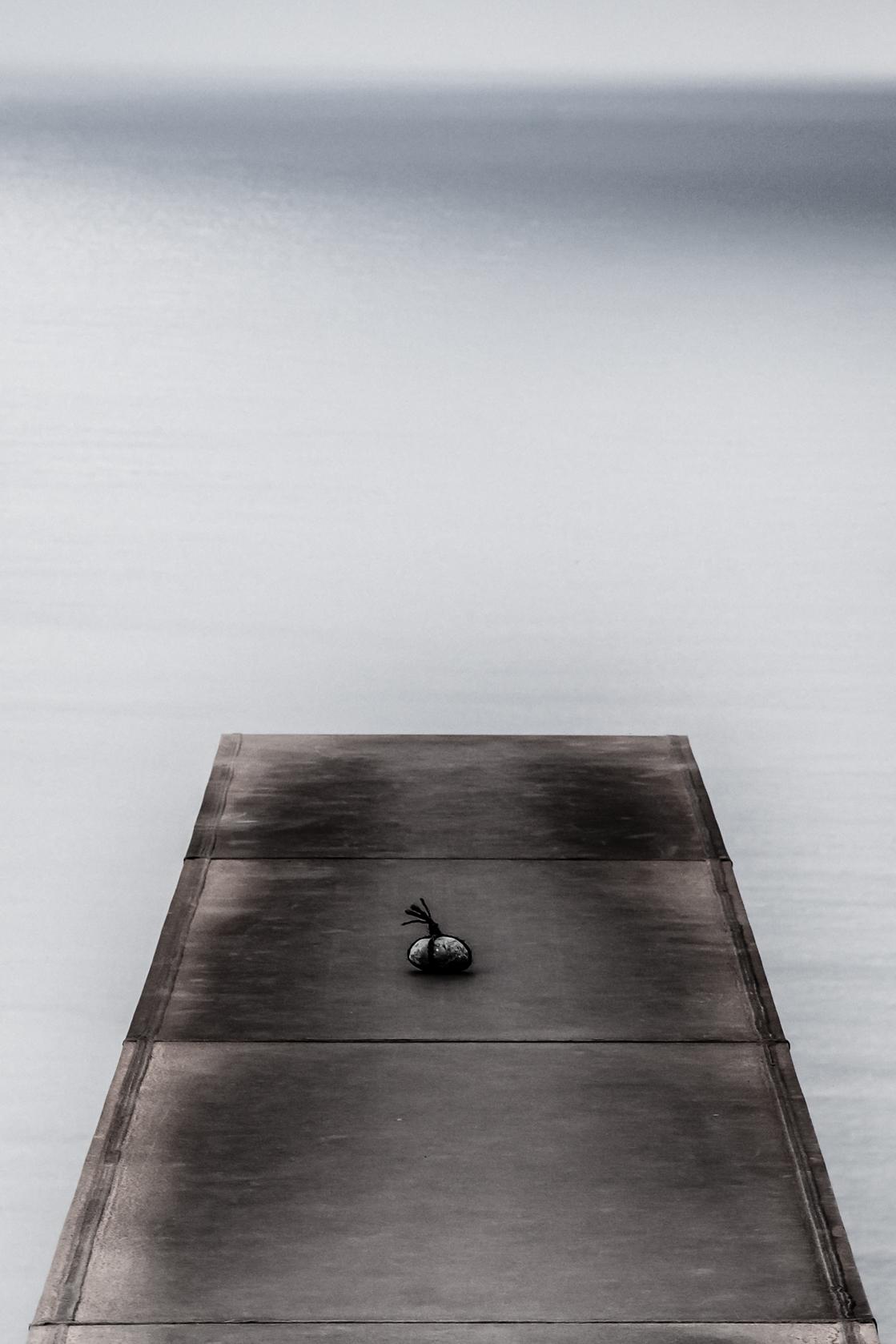 shizen-1.jpg