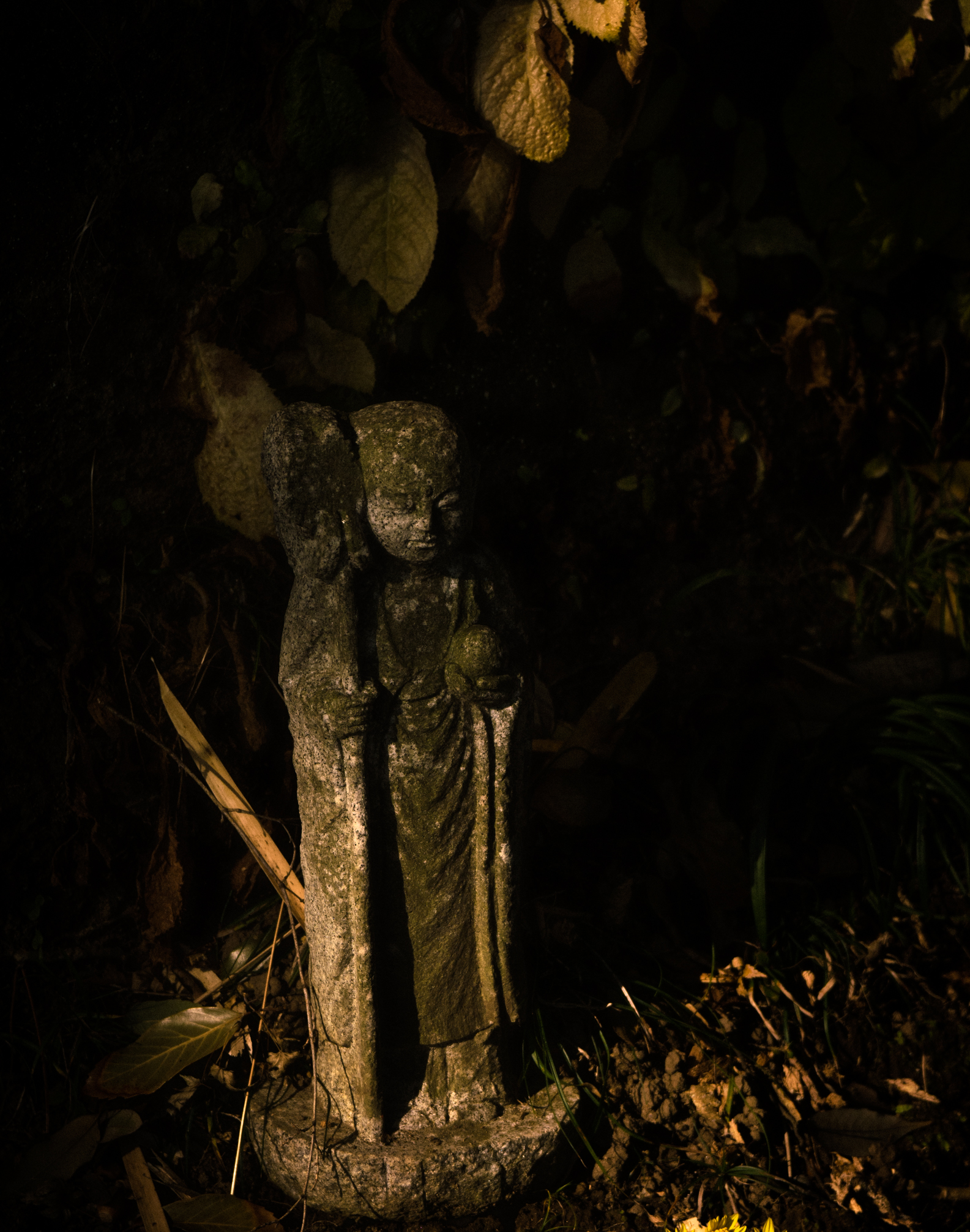 feeble light-15.jpg