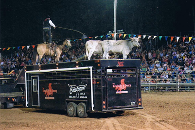 RAWHIDE AND DUSTY SHOW - COME OUT AND SEE TRAINED BULLS!!!