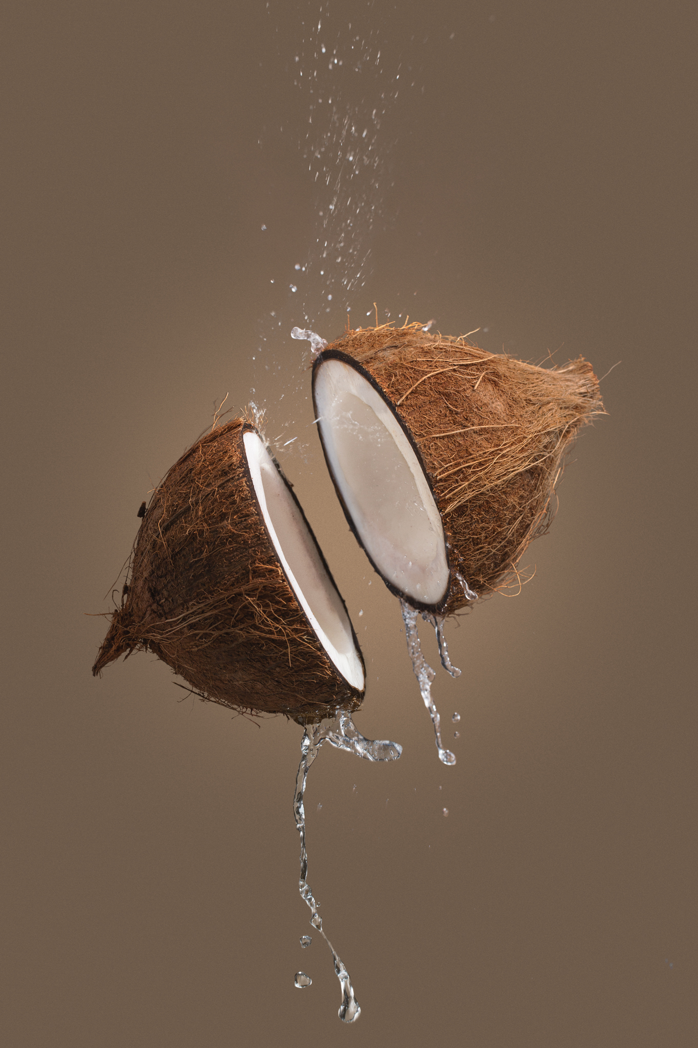Ninja-Fruits-Coconut.jpg