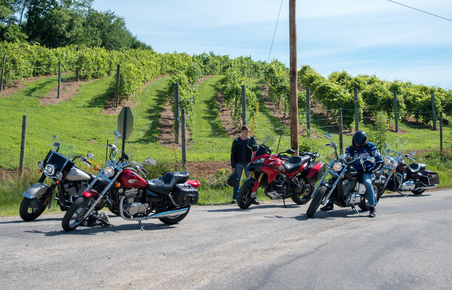 Petit Chevaliers Vineyard on Laurel Run Rd south of SR 56. Oh, and some rad rides, thanks Sarah Sipos for the photo!