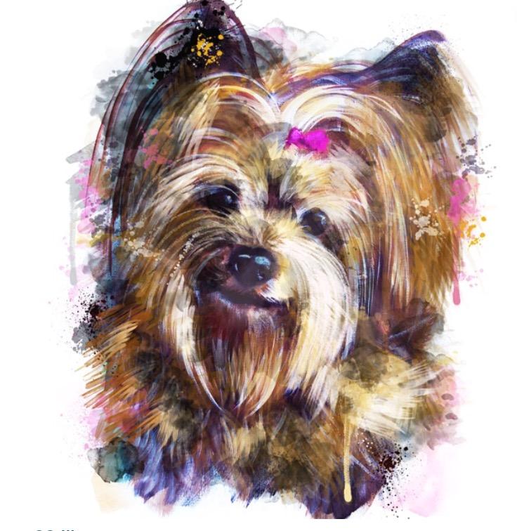 Catherine Bayliss multimedia custom pet portrait. www.catherinebayliss.com