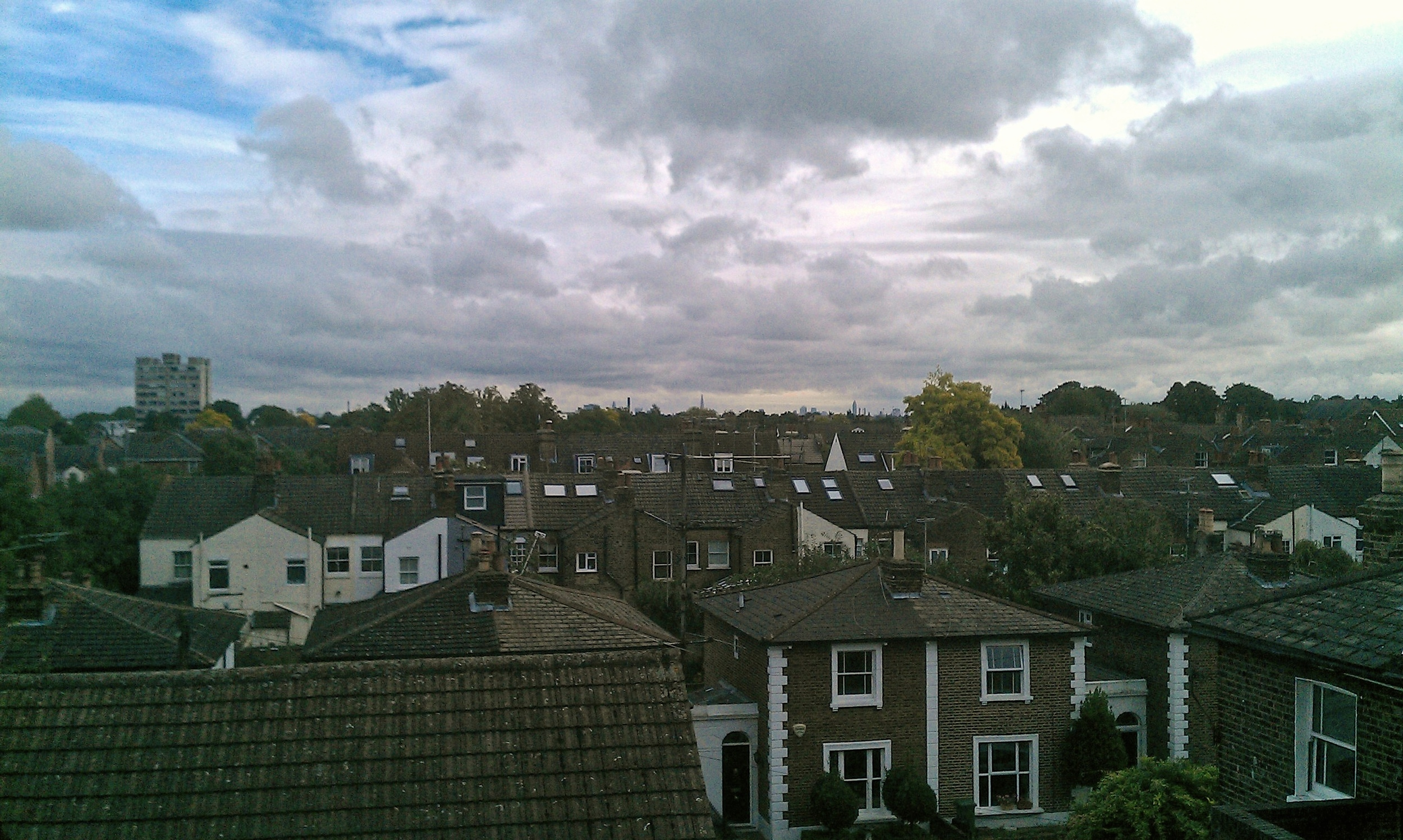 View from the scaffold