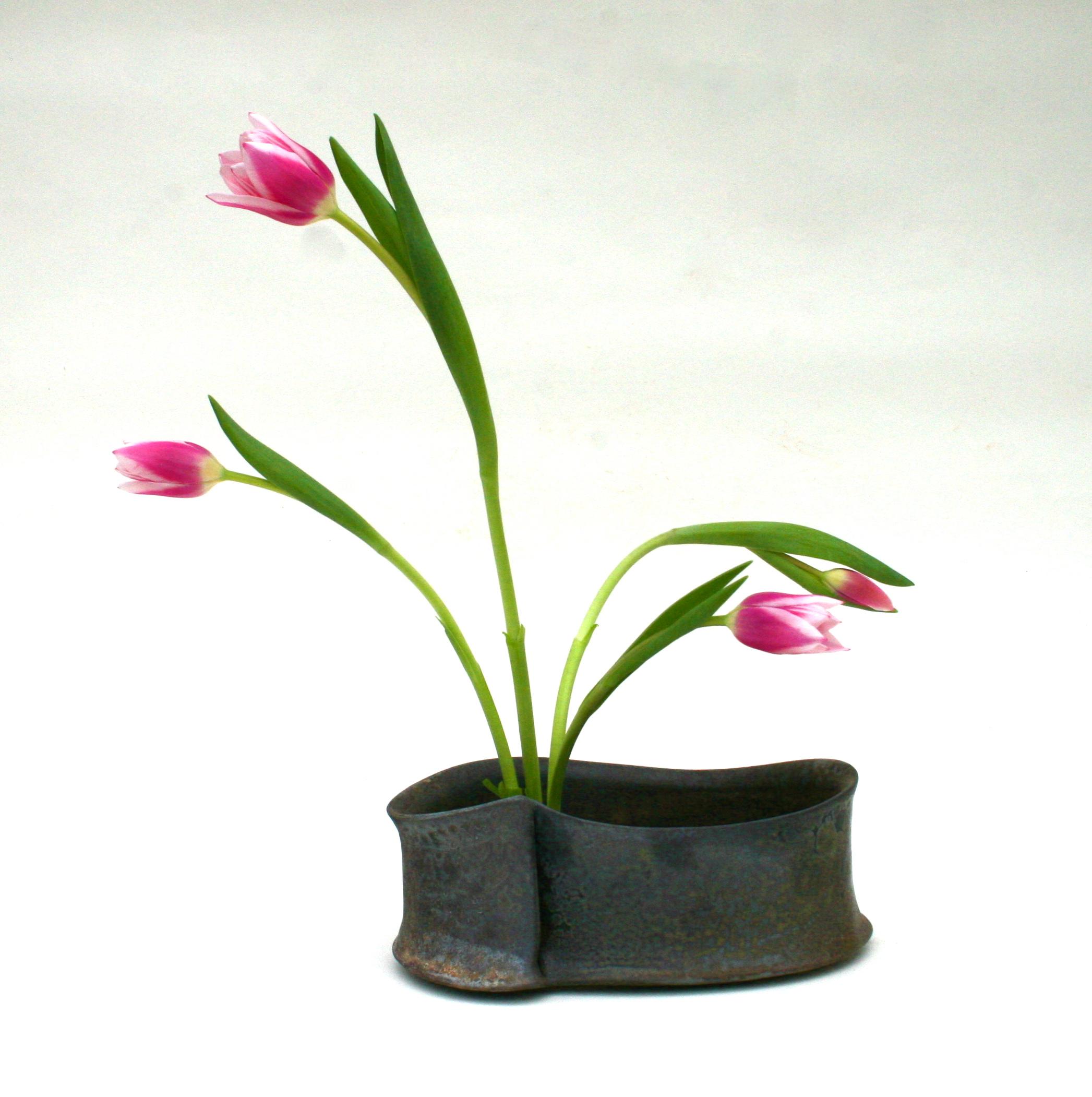 vase with tulips.JPG