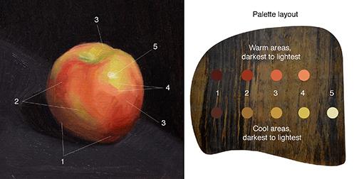 apple pallet layout.jpg