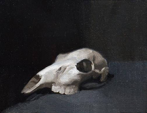 grassile skull.jpg