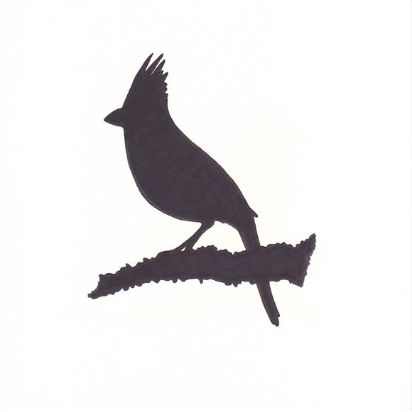 Virginia - Cardinal