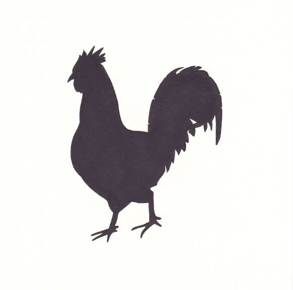 Rhode Island - Rhode Island Red Chicken