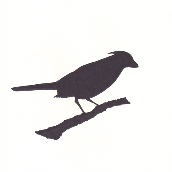 Indiana - Cardinal