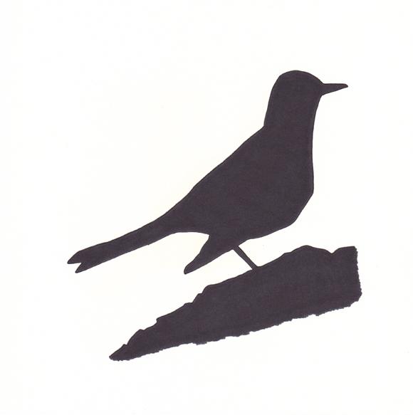 Wisconsin - Robin