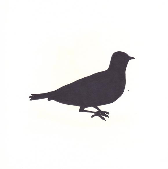 Kansas - Western Meadowlark