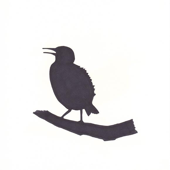 Nebraska - Western Meadowlark