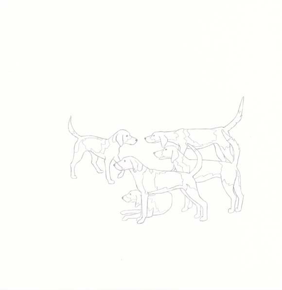 Virginia - American Foxhound - Five