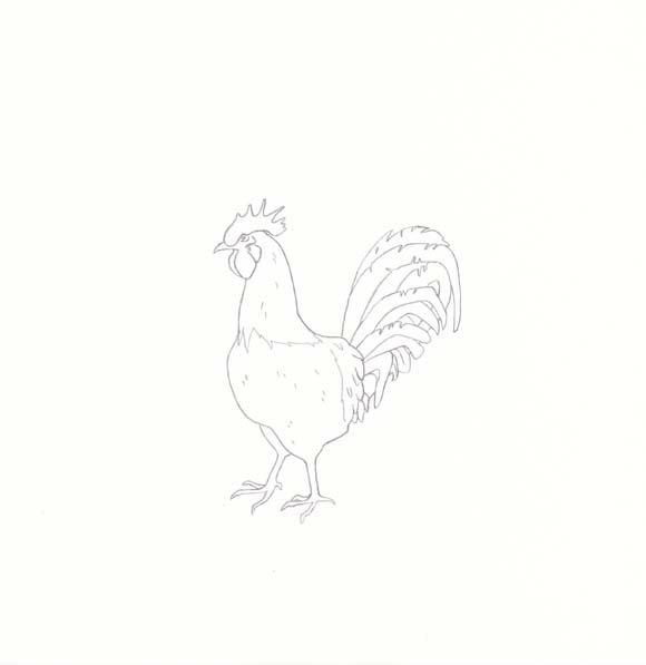 Rhode Island - Rhode Island Red Chicken - One