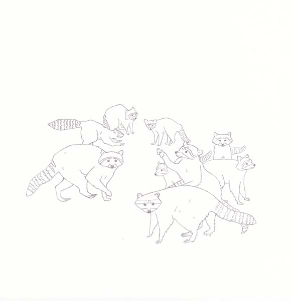 Tennessee - Raccoon - Nine