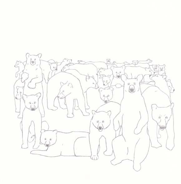 Louisiana - Louisiana Black Bear - Thirty Six