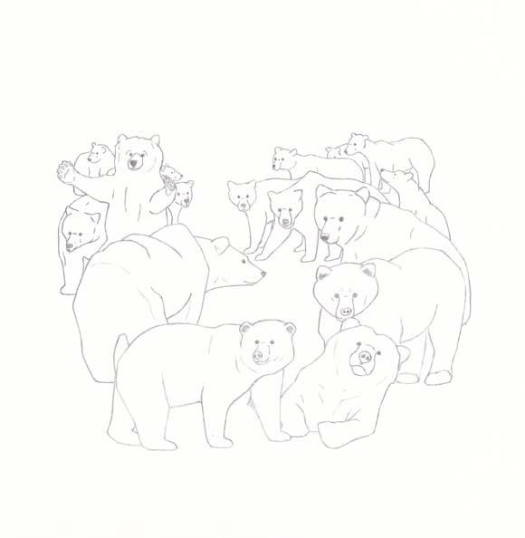 California - Grizzly Bear - Sixteen