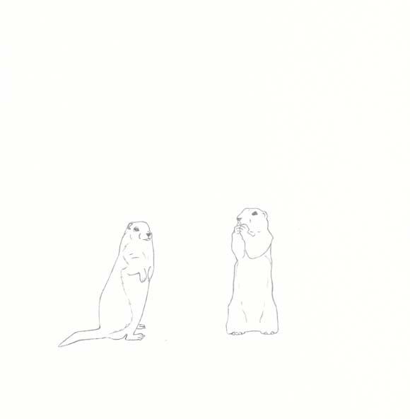 Minnesota - Gopher - Two