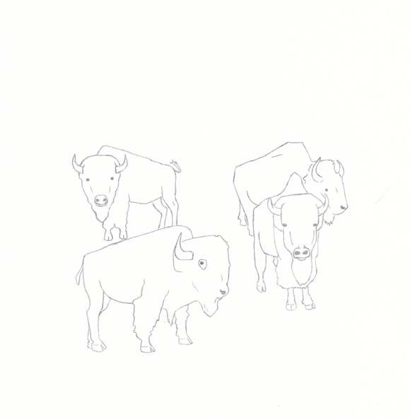 Kansas - Buffalo - Four