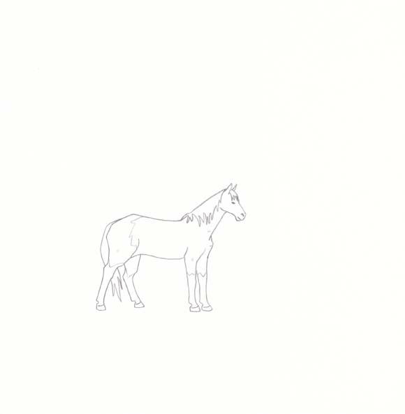 North Dakota - Nakota Horse - One