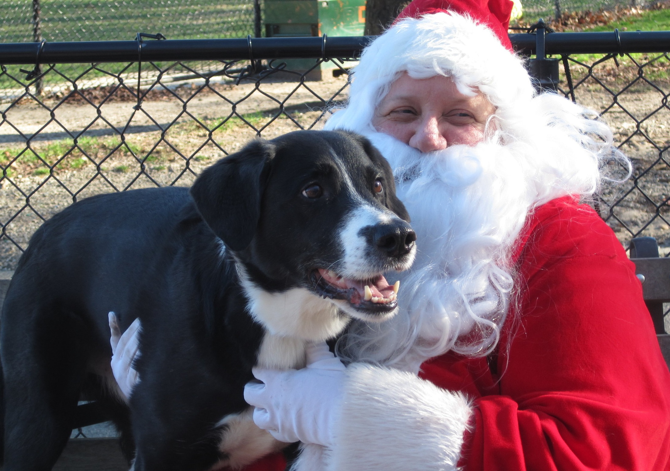 "Deb as ""Santa Paws"" in winter of 2003, with her favorite elf, Nick"