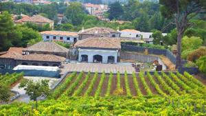 benanti-winery.jpg