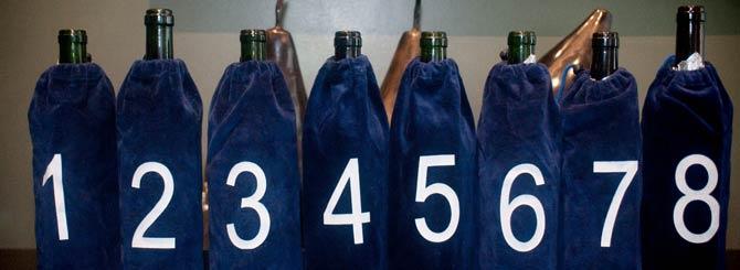 chile-wine-tasting-10000845.jpg