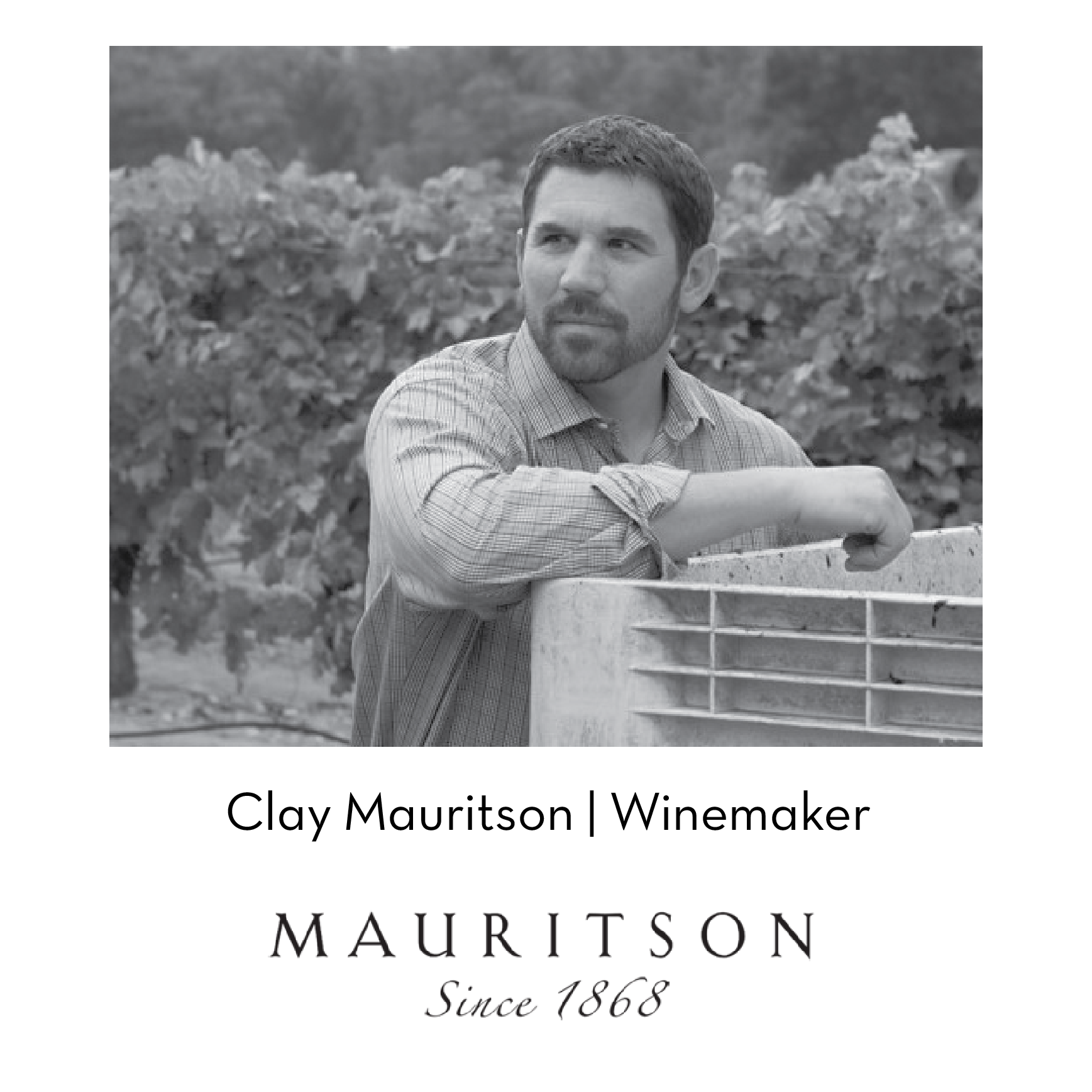winemakers-cards-03.png