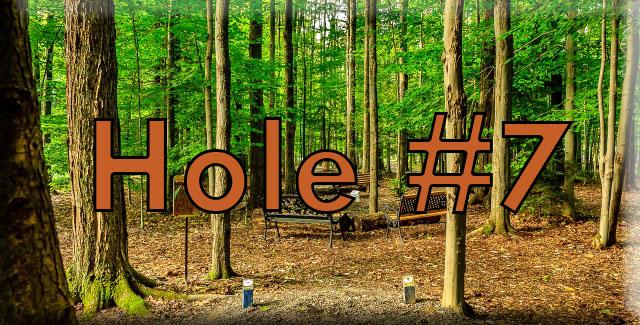 Hole7 (640x325).jpg
