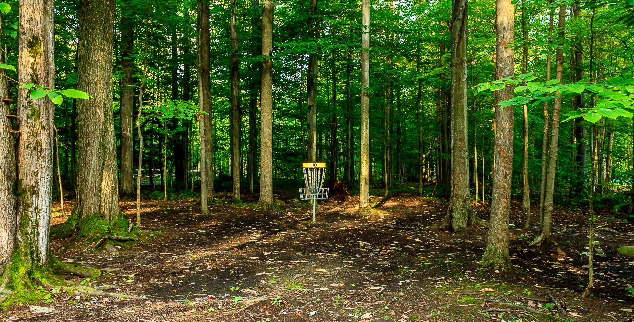 Hole #10 Basket Location