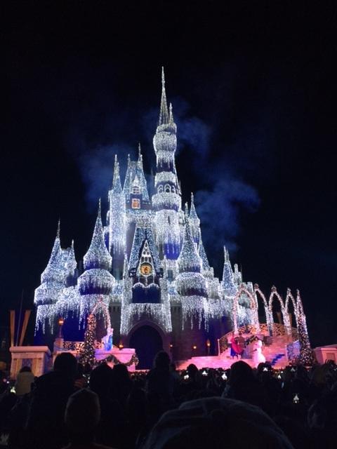 lighted castle.jpg