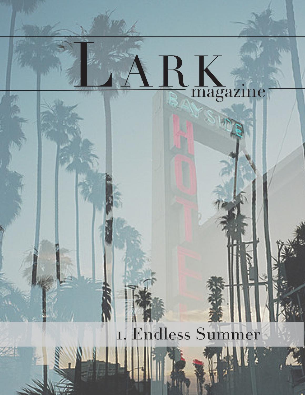 Lark 1 Cover 3.jpg