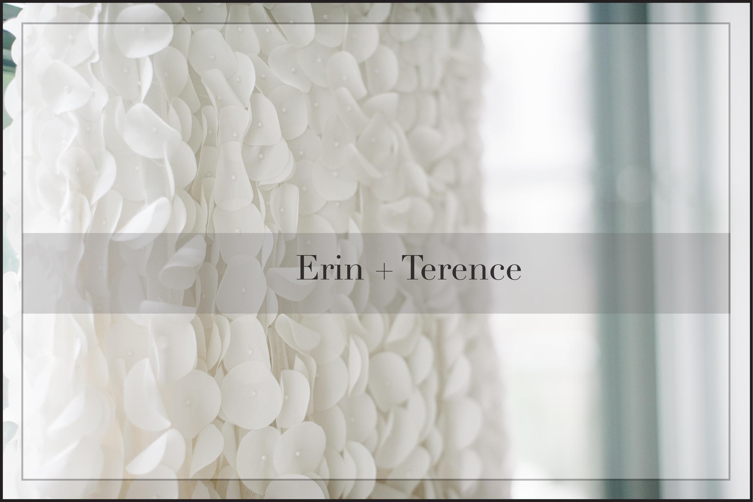 Erin _ Terence cover.jpg