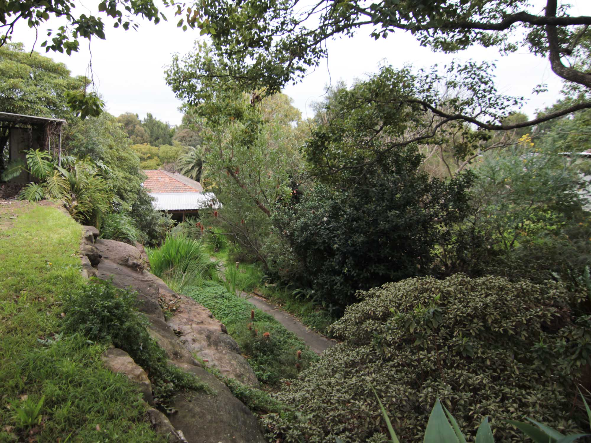 architecture_sydney_residential_studioplusthree_Cooks_River_House_existing site.jpg