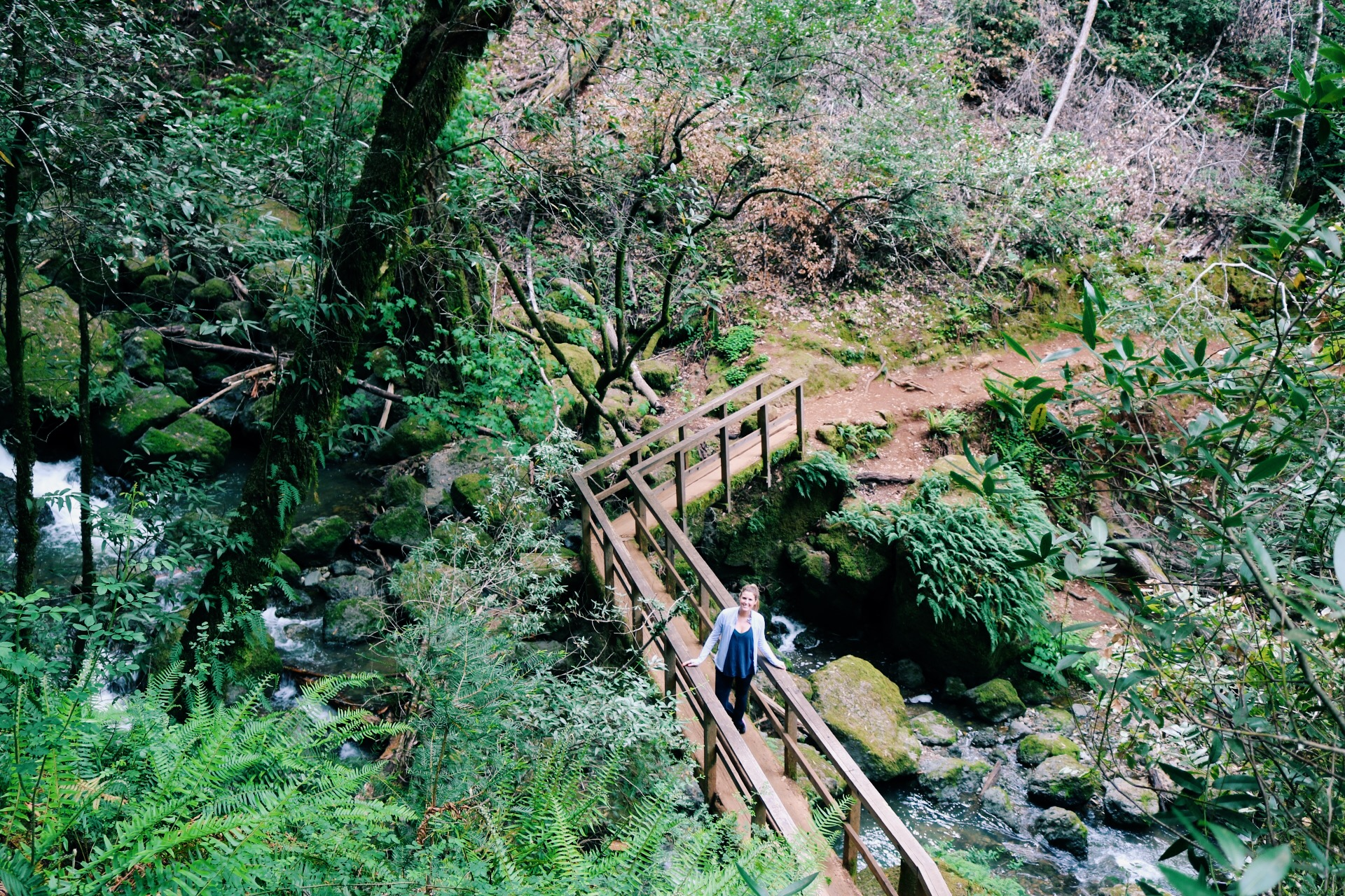 hiking-trails-mount-tam.jpg