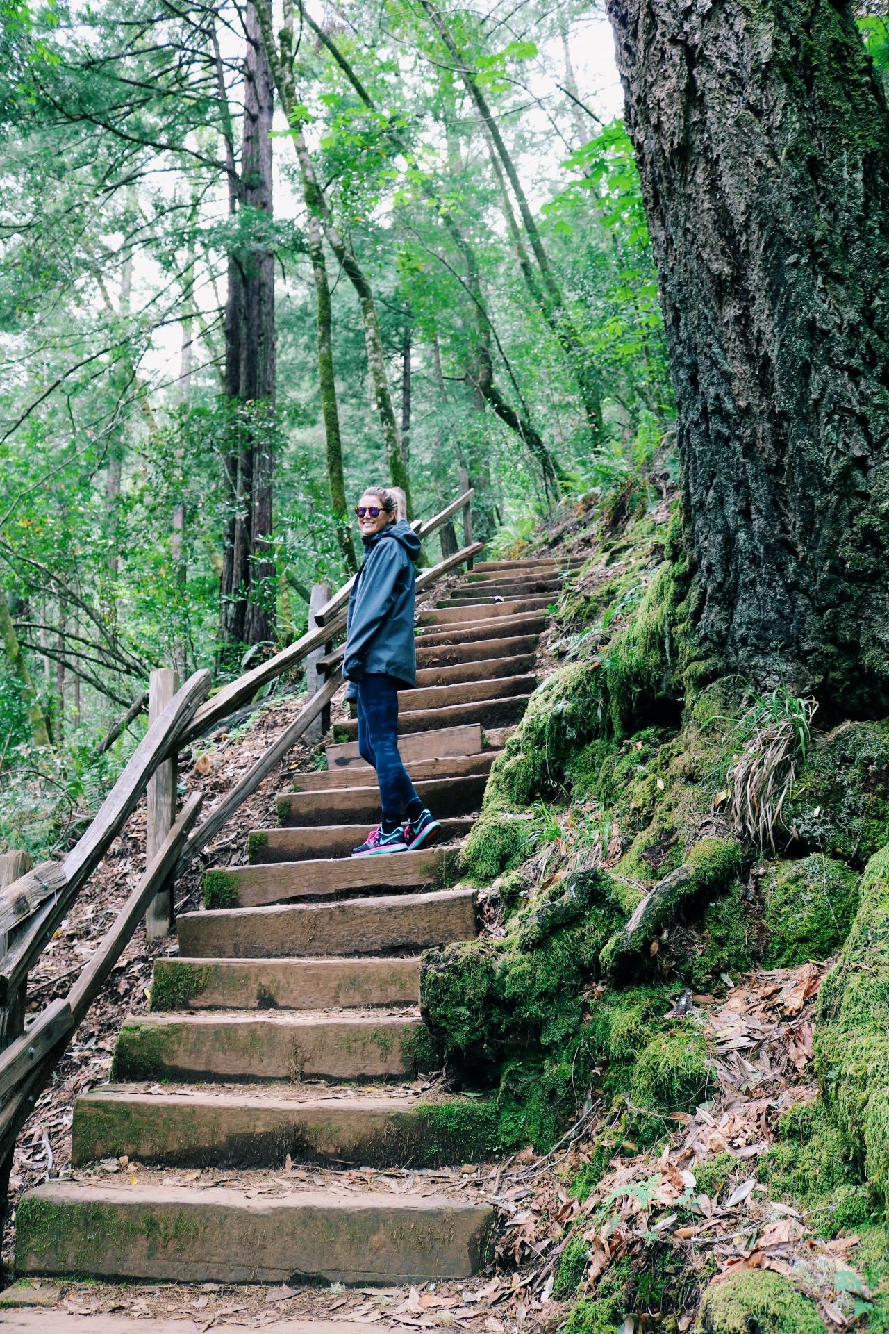 mount-tamalpais-hike.jpg