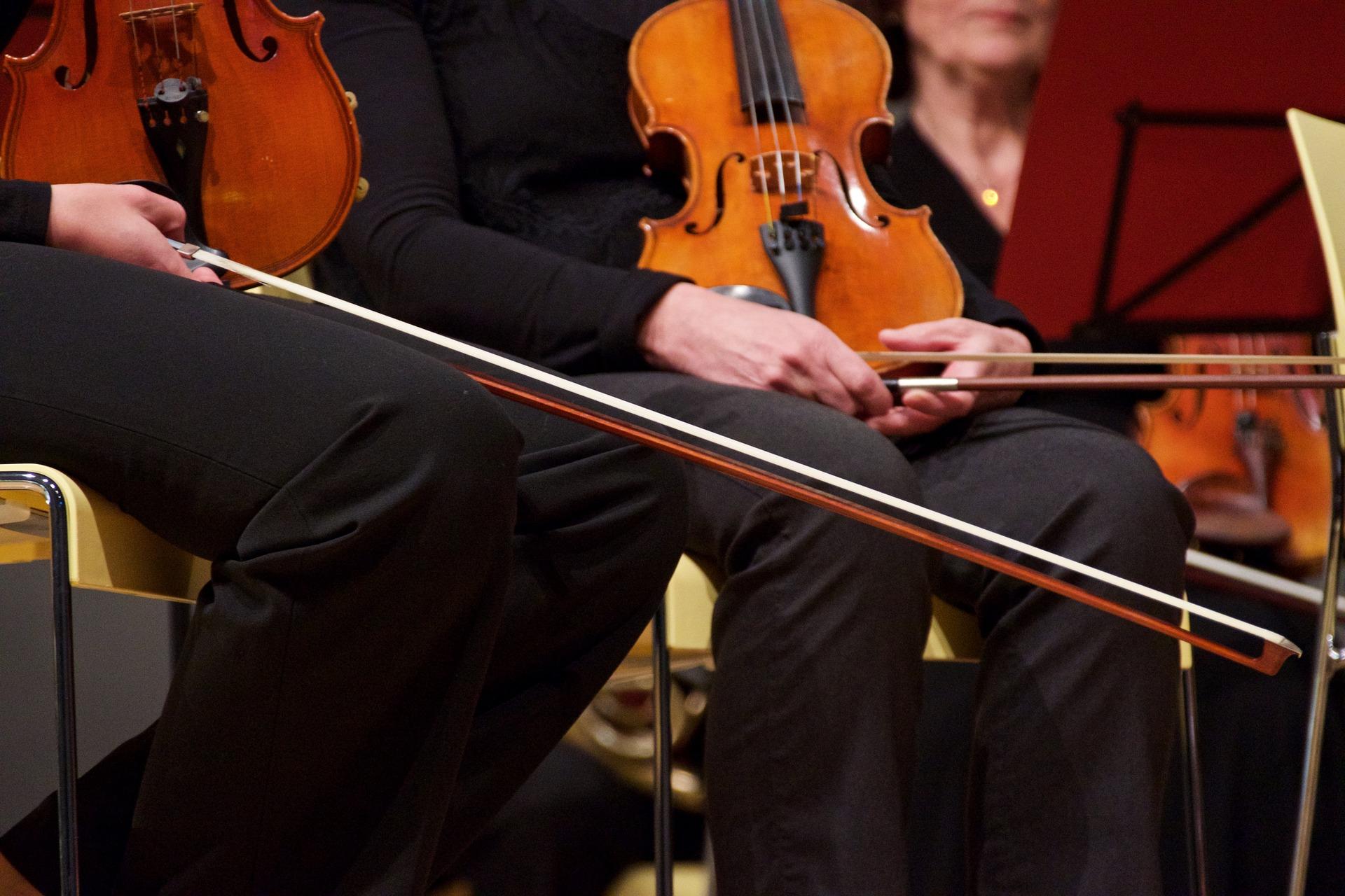 Strings trios, quartets