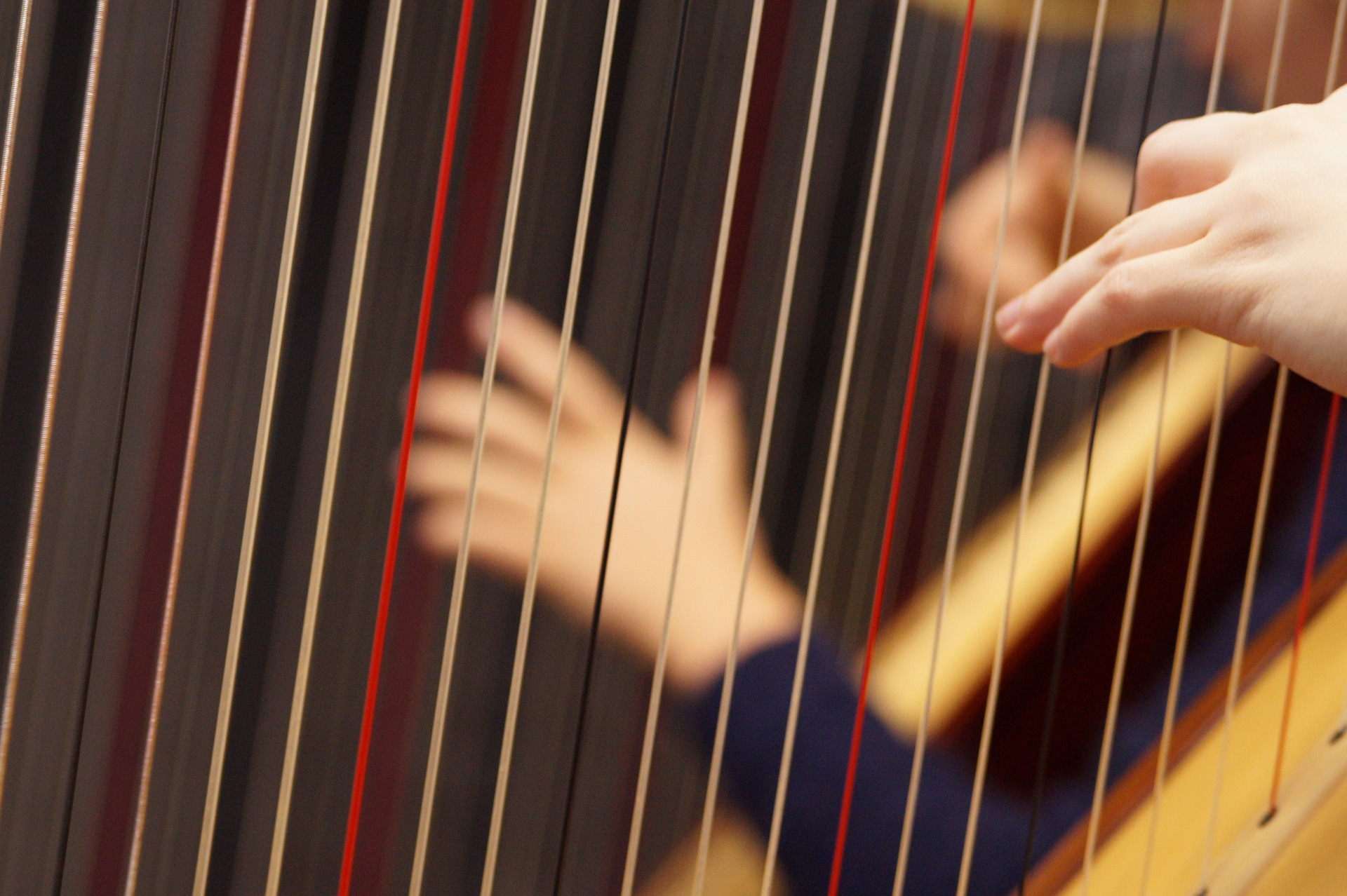 musical-instrument-1566606_1920.jpg