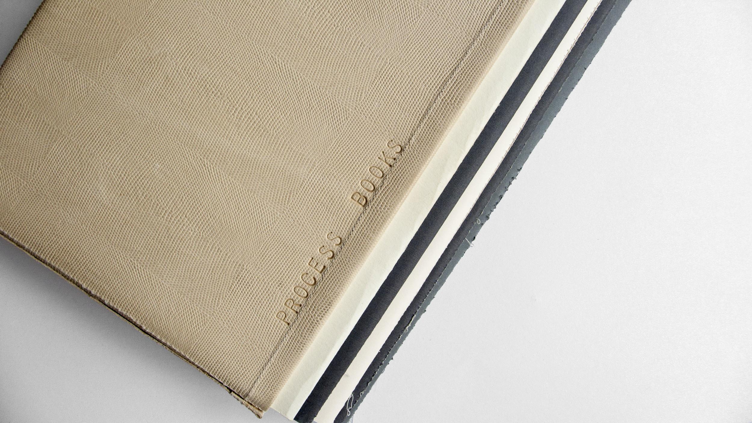BOOKS: PROCESS BOOKS