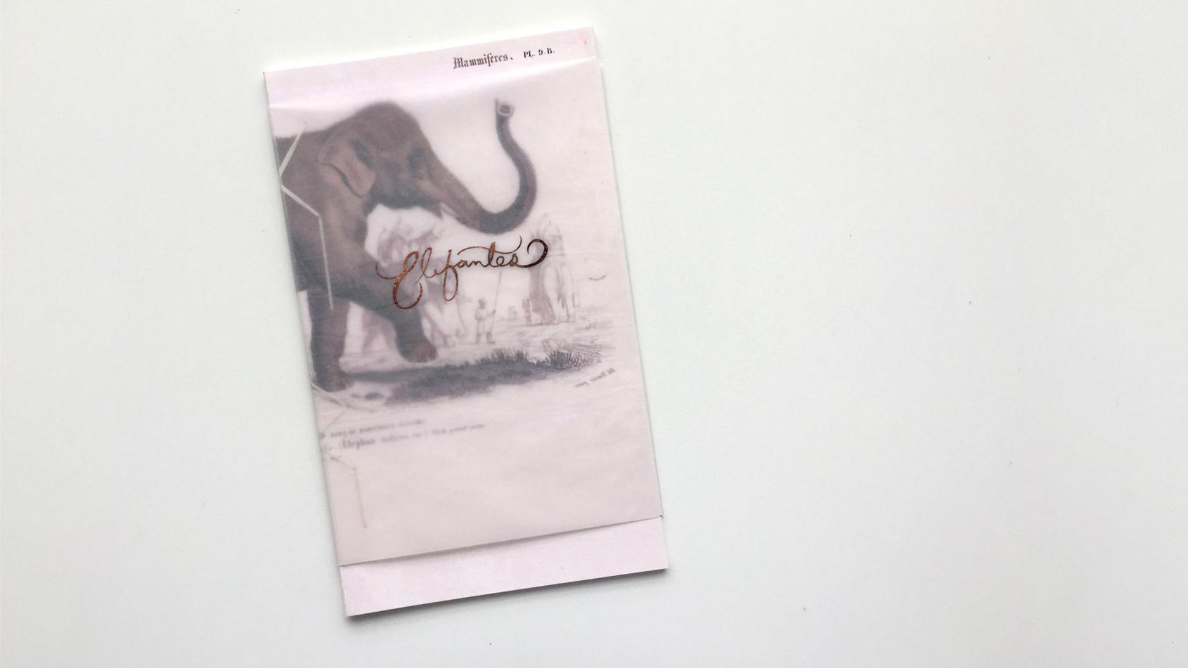 ELEFANTES - book & typography design