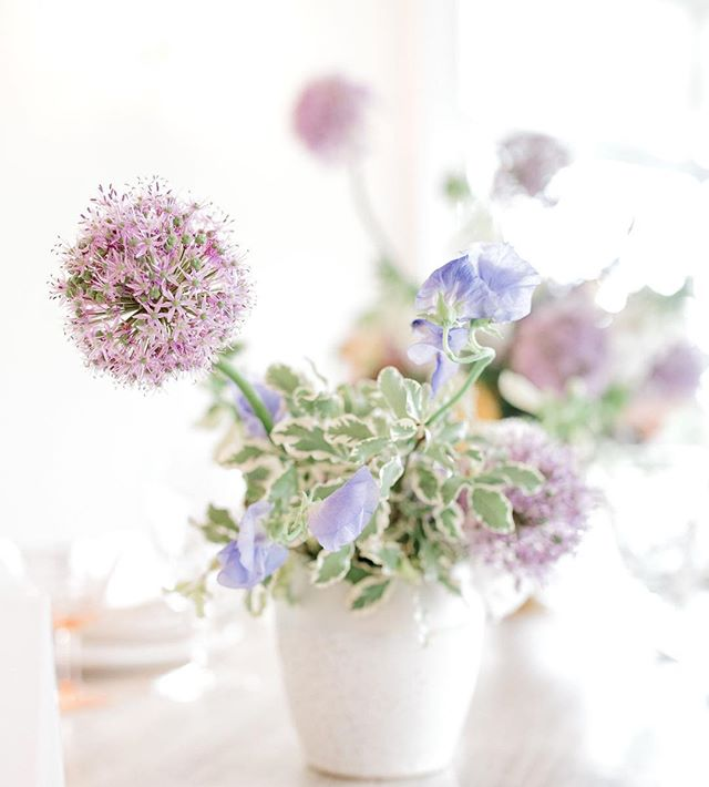 Baubles of lavender allium fading into light and a beautiful capture by @juliehallphotography for the official opening of @whitechateau event space in KY!