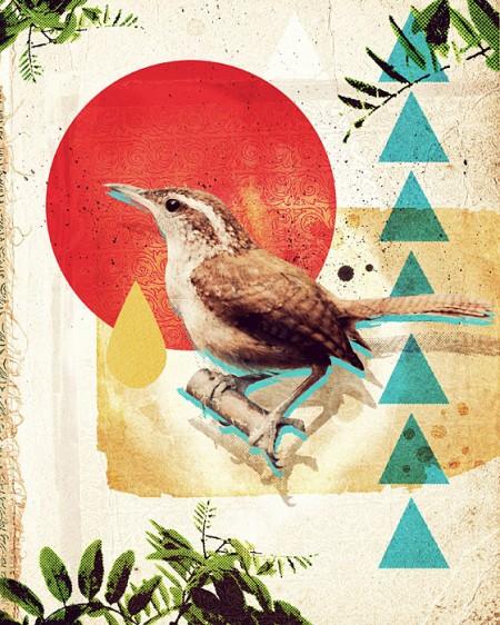 bird-collage