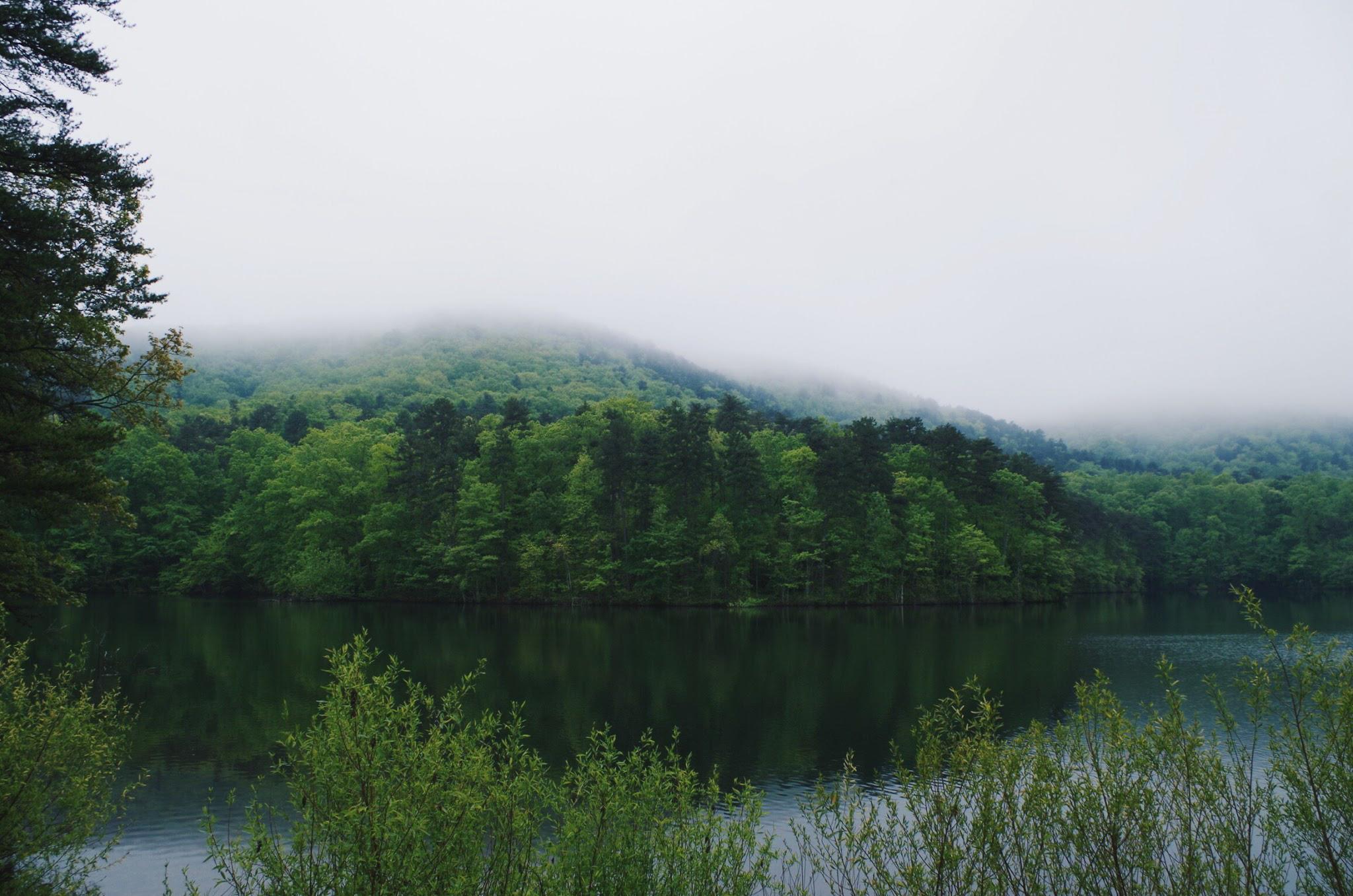 Paris Mountain State Park - Photo by Evan Lewis