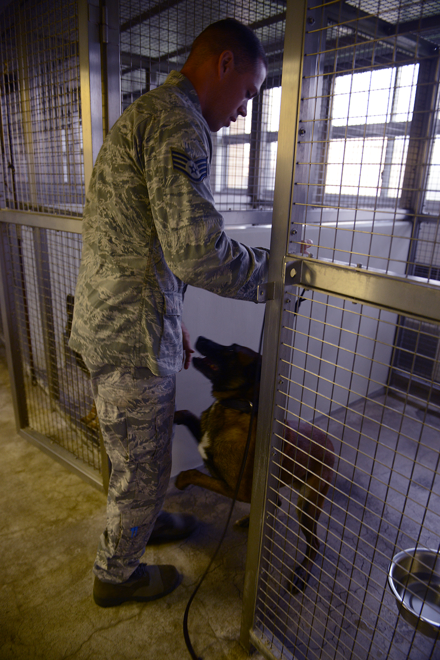 Staff Sgt. Nicholas Galbraith, 374th Security Forces Squadron military working dog handler, begins his workday by greeting his partner, Topa, at Yokota Air Base, Japan, July 29, 2015. Handlers retrieve their canine partners before checking out his protective gear or attending guard mount each morning. (U.S. Air Force photo by Senior Airman David C. Danford/Released)