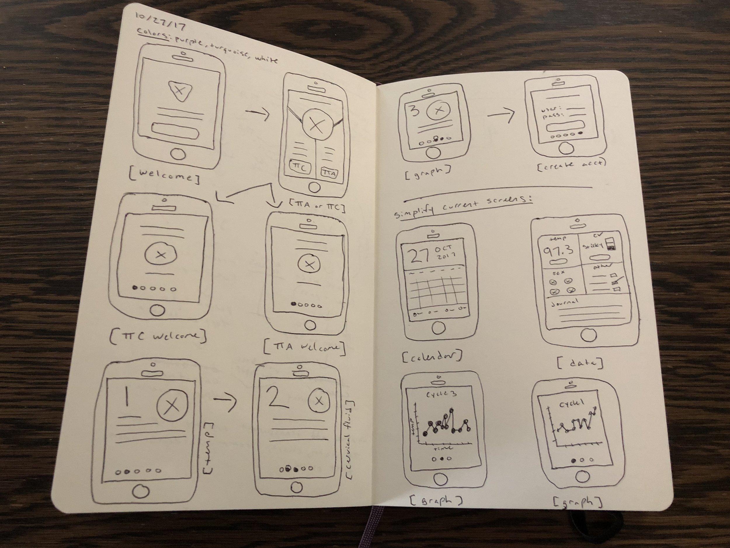 screen-sketches.JPG