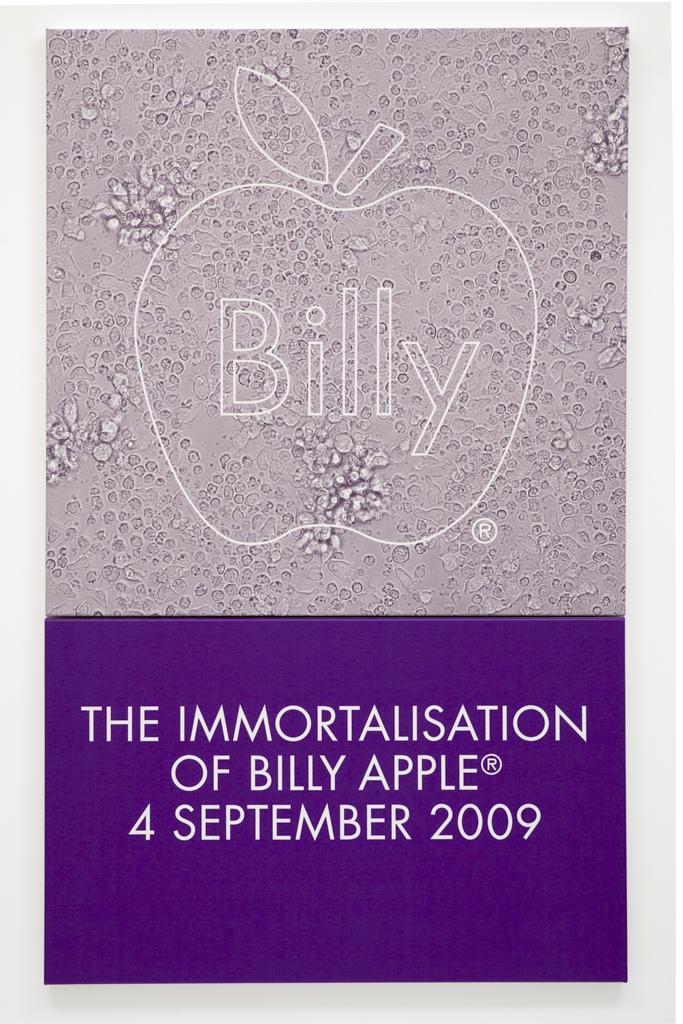 The Immortalisation of Billy Apple® 4 September 2009
